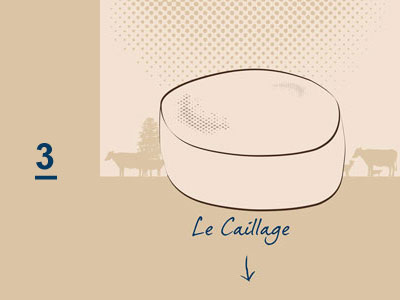 LE CAILLAGE FROMAGE - FROMAGER PORNICHET