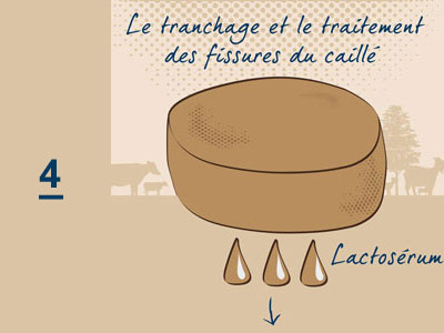 Fabrication fromage - Fromagerie Pornichet