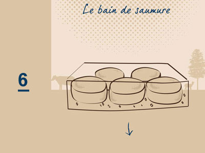 Fabrication fromage - Fromagerie Pornichet La Baule